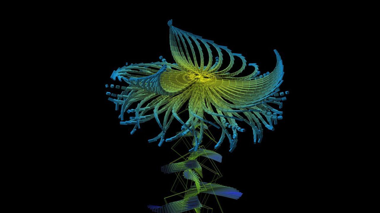 Miguel CHEVALIER Artiste Français né au Mexique en 1959 lun des pionniers de lart virtuel et numérique Depuis 1978 il utilise linformatique comme moye