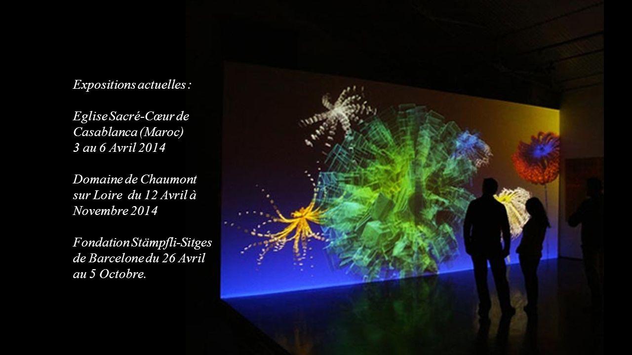 Expositions actuelles : Eglise Sacré-Cœur de Casablanca (Maroc) 3 au 6 Avril 2014 Domaine de Chaumont sur Loire du 12 Avril à Novembre 2014 Fondation Stämpfli-Sitges de Barcelone du 26 Avril au 5 Octobre.