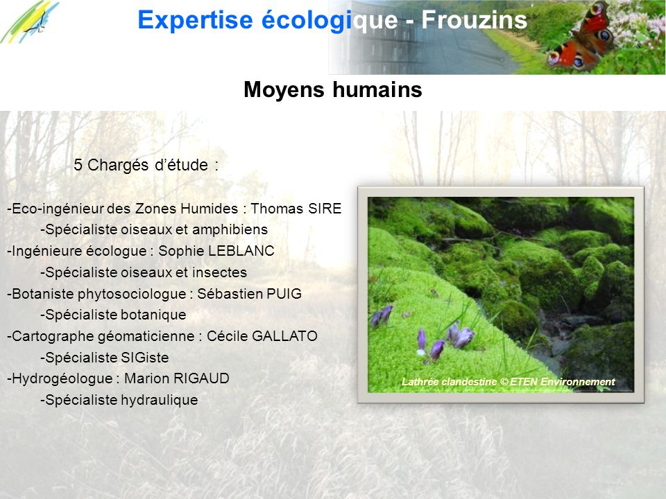 Moyens humains 5 Chargés détude : -Eco-ingénieur des Zones Humides : Thomas SIRE -Spécialiste oiseaux et amphibiens -Ingénieure écologue : Sophie LEBL