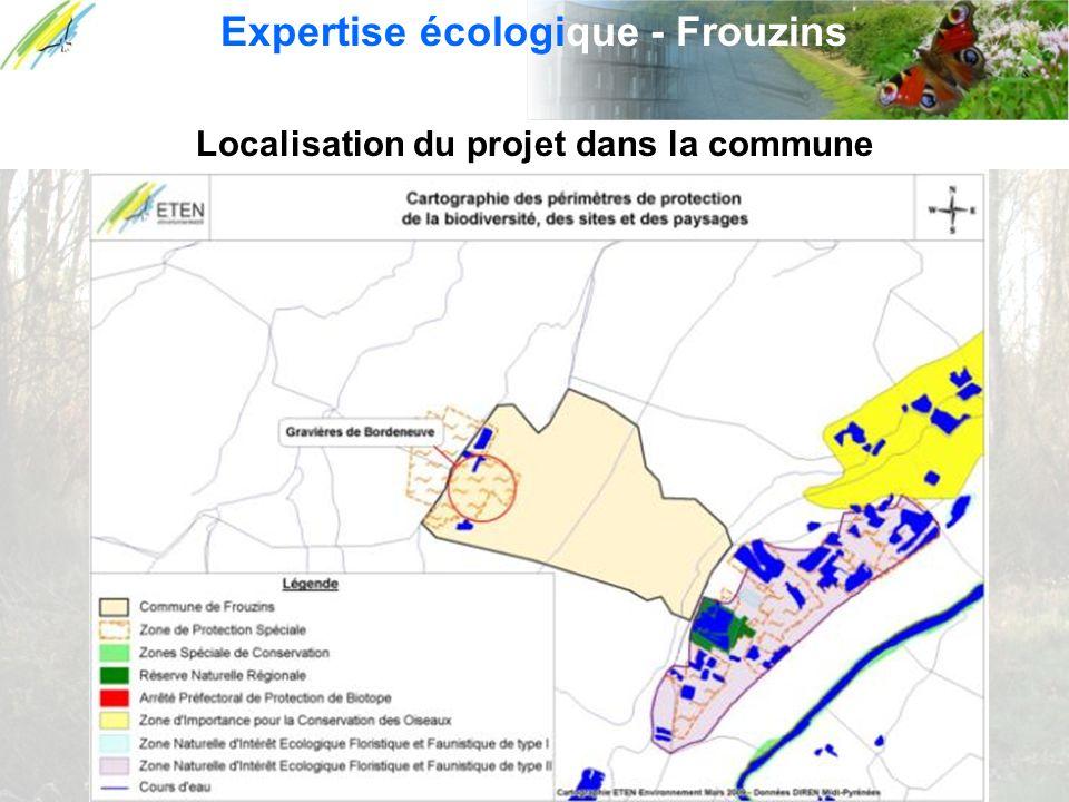 Localisation du projet dans la commune Expertise écologique - Frouzins