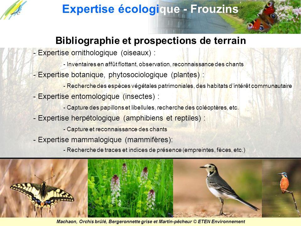 Bibliographie et prospections de terrain - Expertise ornithologique (oiseaux) : - Inventaires en affût flottant, observation, reconnaissance des chant