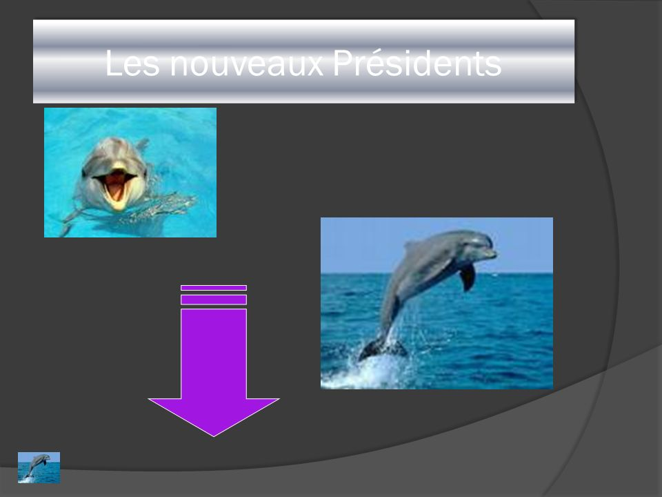 Les nouveaux Présidents