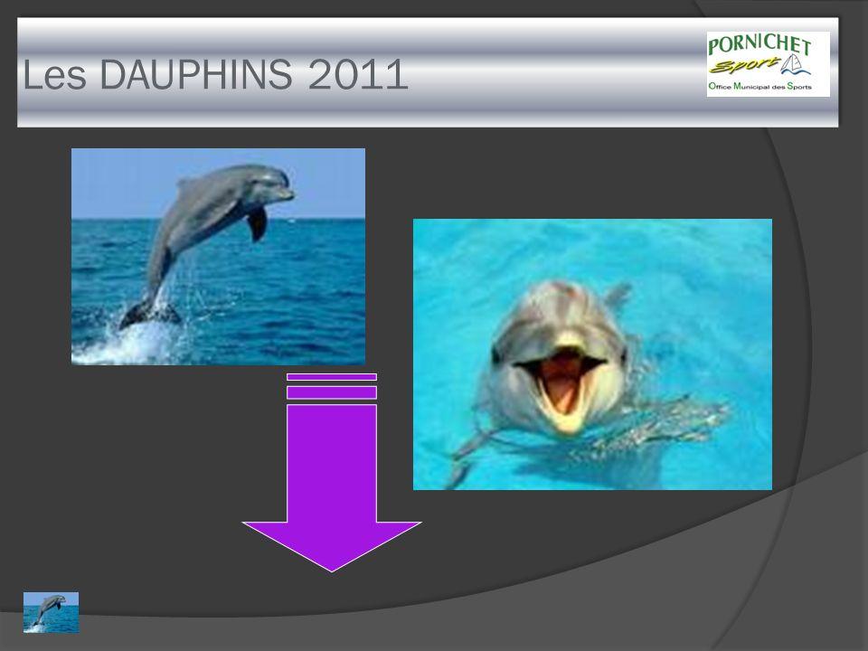 Les DAUPHINS 2011