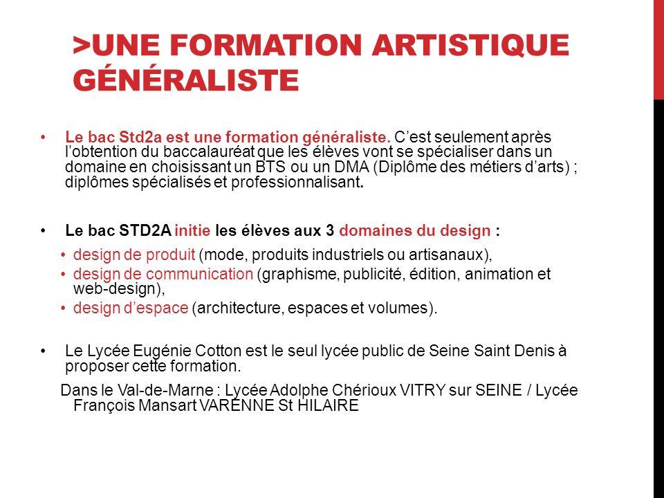 >UNE FORMATION ARTISTIQUE GÉNÉRALISTE Le bac Std2a est une formation généraliste.