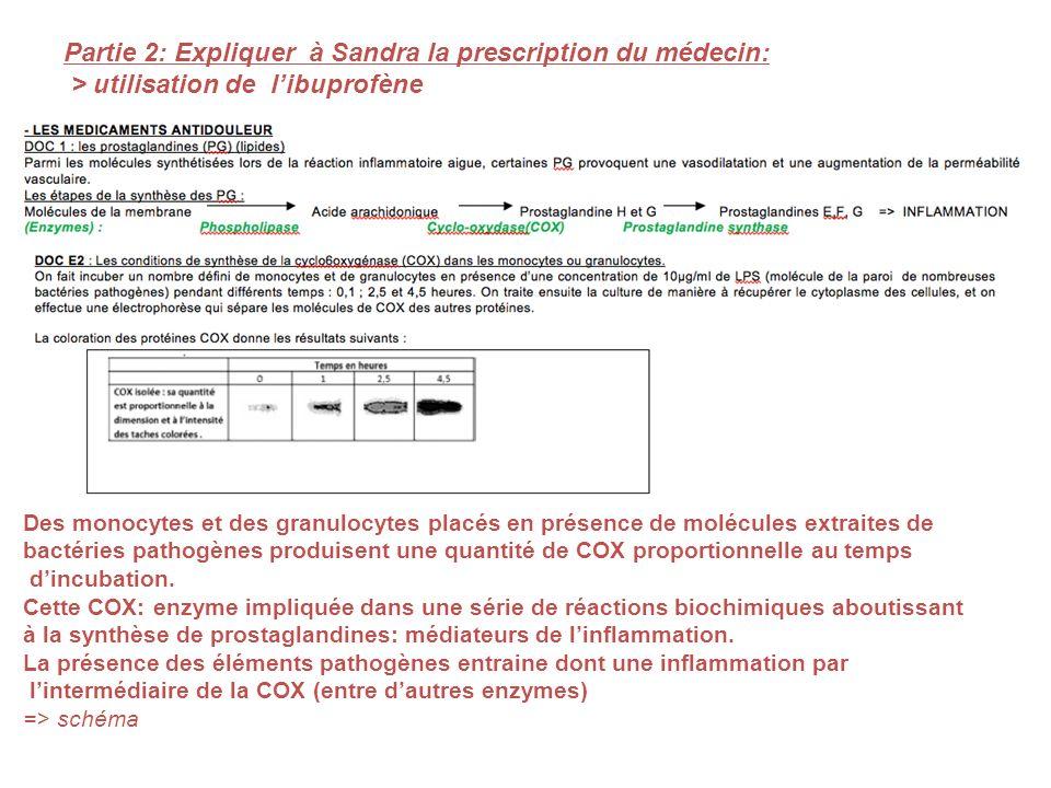 Partie 2: Expliquer à Sandra la prescription du médecin: > utilisation de libuprofène Des monocytes et des granulocytes placés en présence de molécule