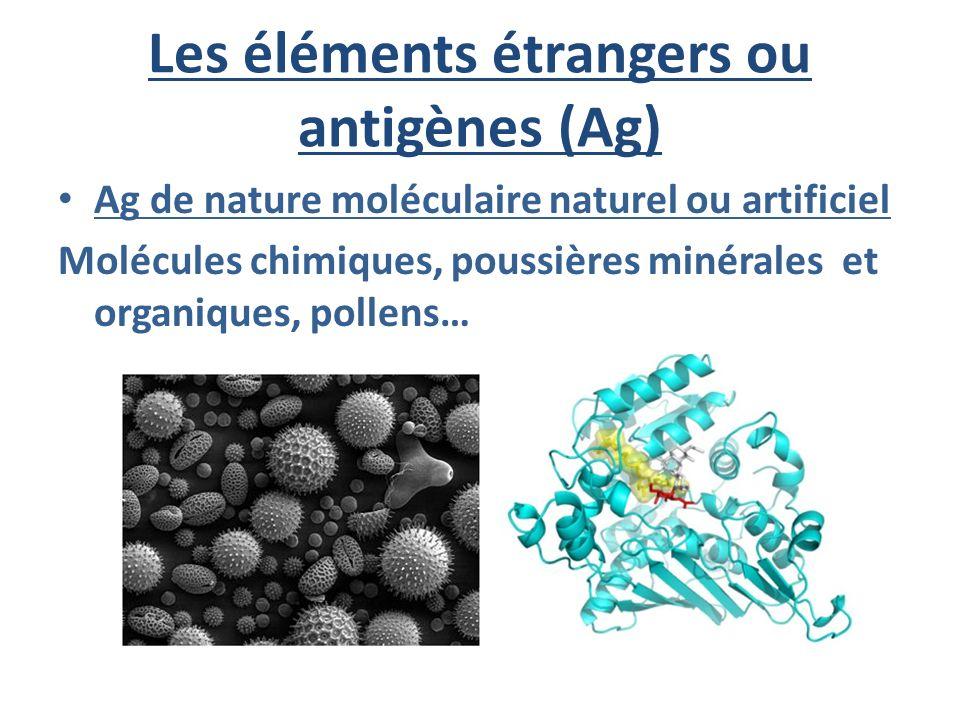 Les éléments étrangers ou antigènes (Ag) Ag de nature moléculaire naturel ou artificiel Molécules chimiques, poussières minérales et organiques, polle