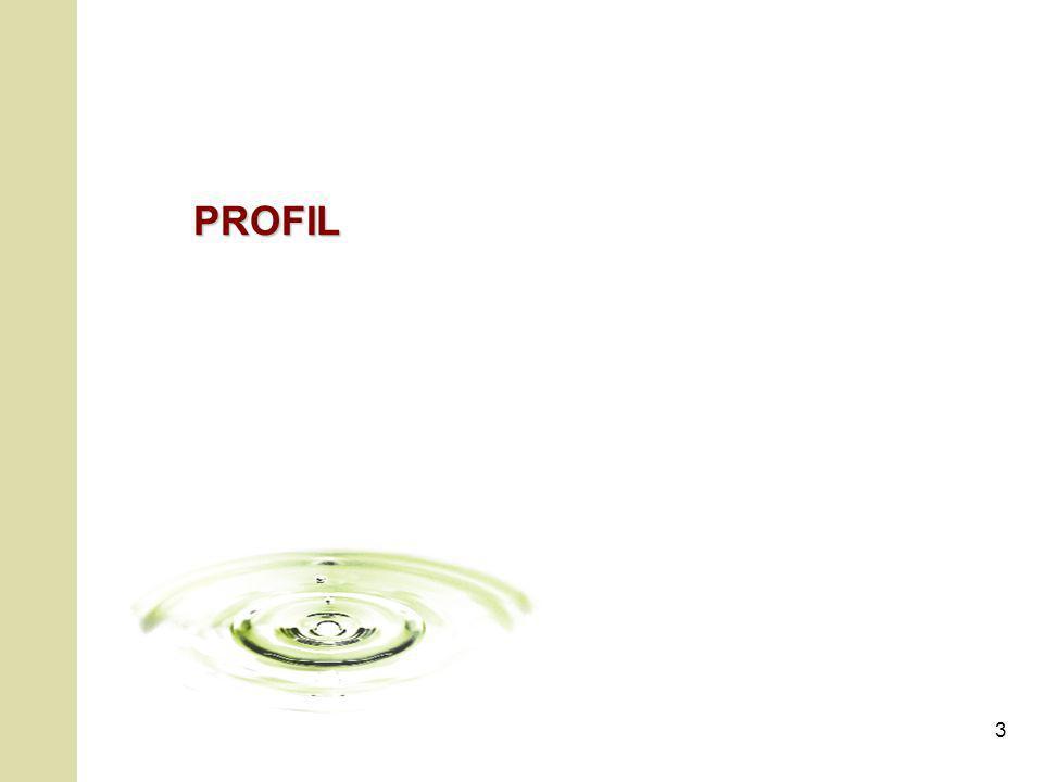 3 PROFIL