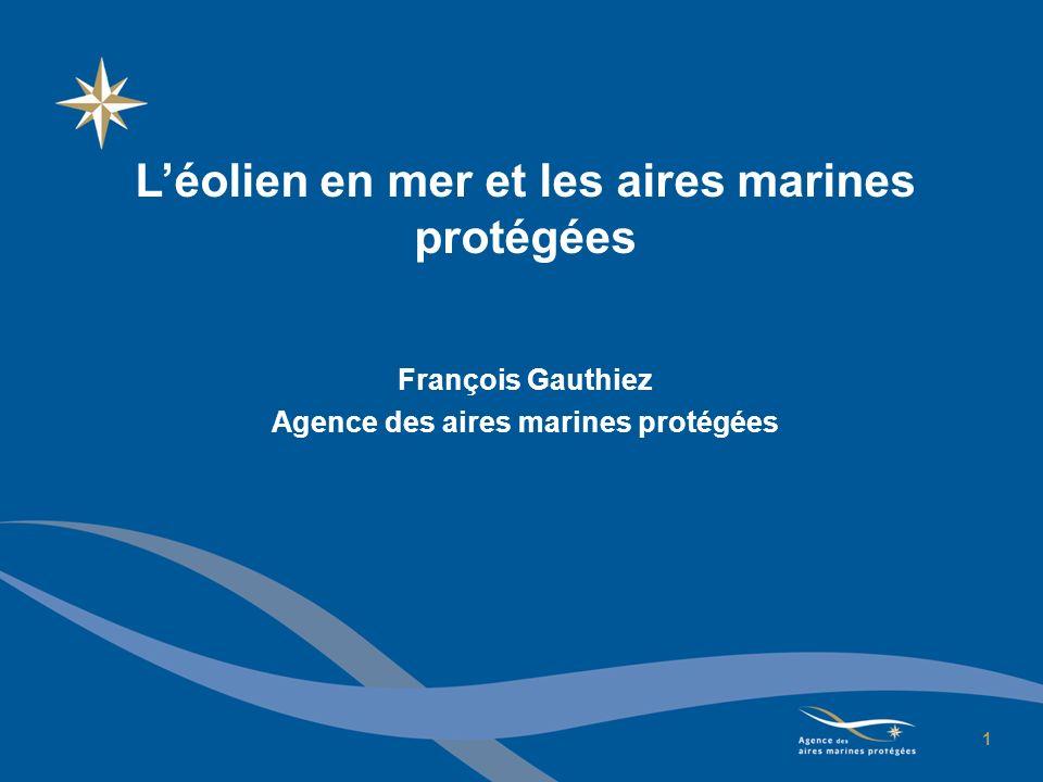 Plan de lexposé 1.Les aires marines protégées (AMP) : définitions, fonctions, point davancement 2.AMP et développement de léolien : aspects réglementaires 3.Des synergies à développer 2