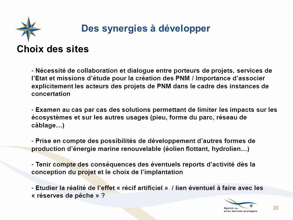 Des synergies à développer Choix des sites - Nécessité de collaboration et dialogue entre porteurs de projets, services de lEtat et missions détude po