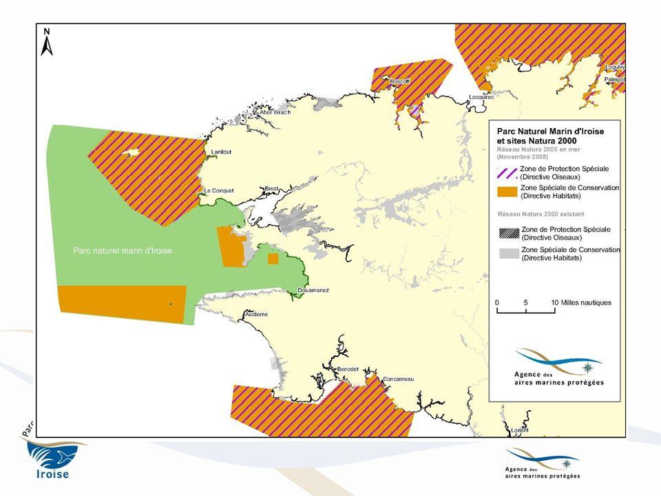 AMP et développement de léolien Parcs naturels marins : avis conforme ( Art.