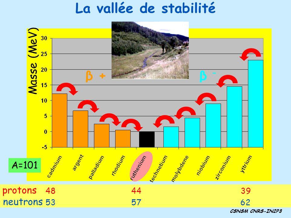 La vallée de stabilité CSNSM CNRS-IN2P3 β –β – Masse (MeV) β –β – β + A=101 protons 484439 neutrons 535762