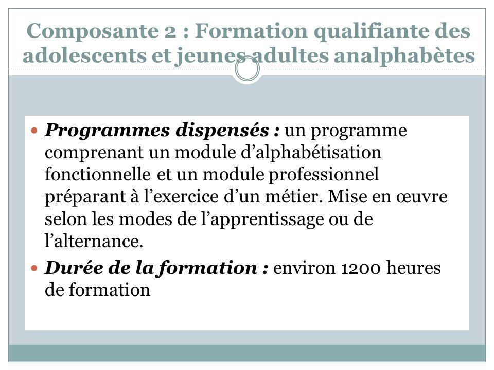 Composante 2 : Formation qualifiante des adolescents et jeunes adultes analphabètes Programmes dispensés : un programme comprenant un module dalphabétisation fonctionnelle et un module professionnel préparant à lexercice dun métier.