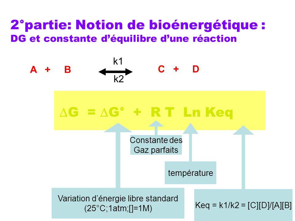 2°partie: Notion de bioénergétique : DG et constante déquilibre dune réaction G = G° + R T Ln Keq Variation dénergie libre standard (25°C;1atm;[]=1M)
