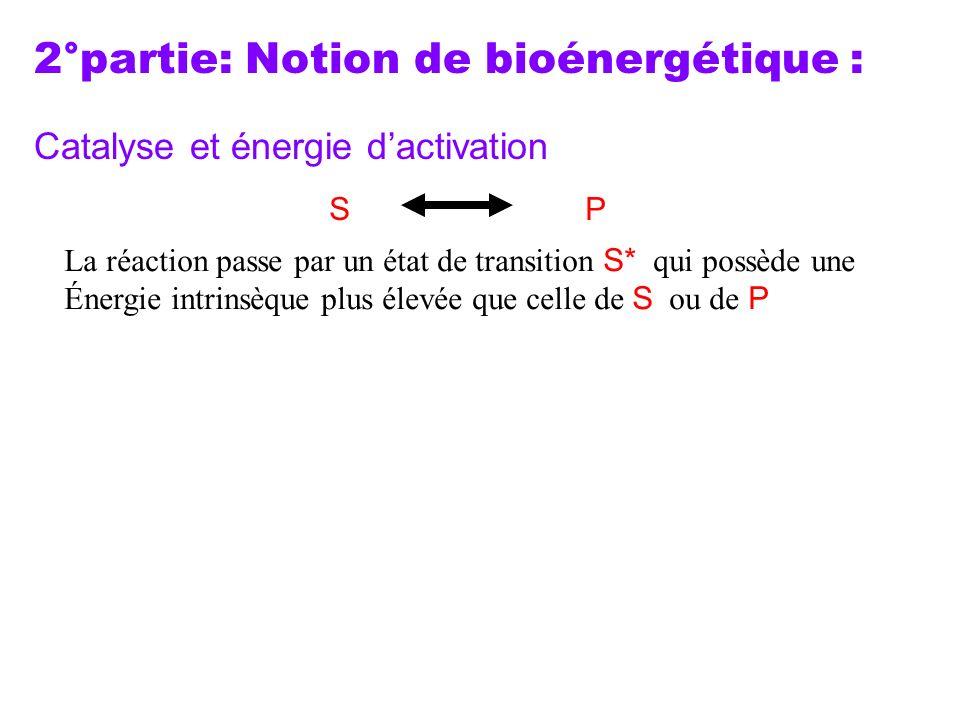 2°partie: Notion de bioénergétique : Catalyse et énergie dactivation La réaction passe par un état de transition S* qui possède une Énergie intrinsèqu