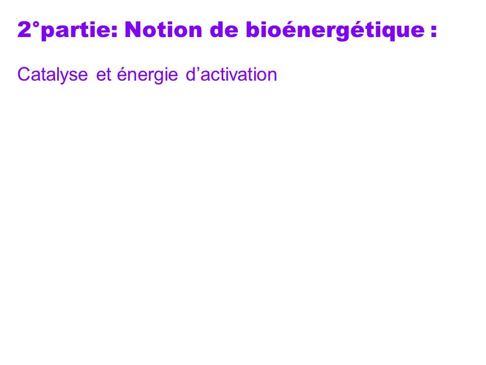 2°partie: Notion de bioénergétique : Catalyse et énergie dactivation