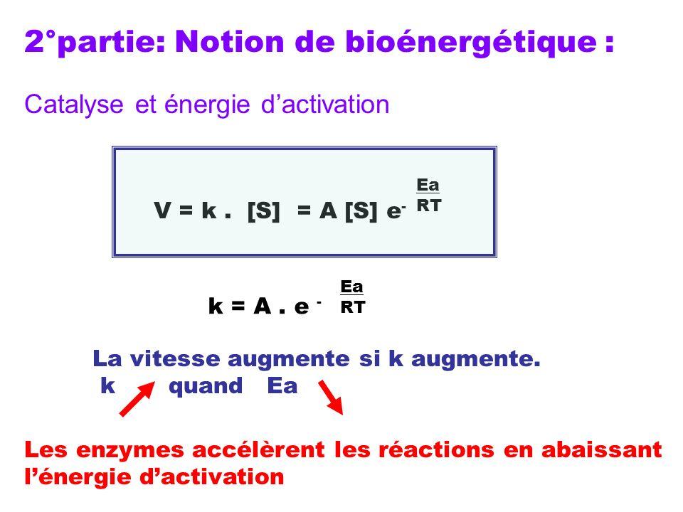 V = k. [S] = A [S] e - Ea RT k = A. e - Ea RT La vitesse augmente si k augmente. k quand Ea Les enzymes accélèrent les réactions en abaissant lénergie
