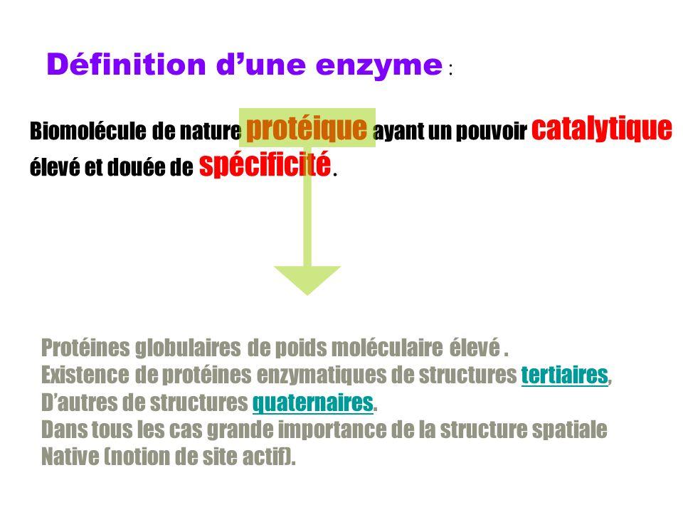 Définition dune enzyme : Biomolécule de nature protéique ayant un pouvoir catalytique élevé et douée de spécificité.