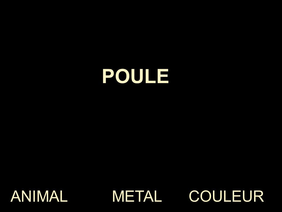 ANIMAL METAL COULEUR NOIR