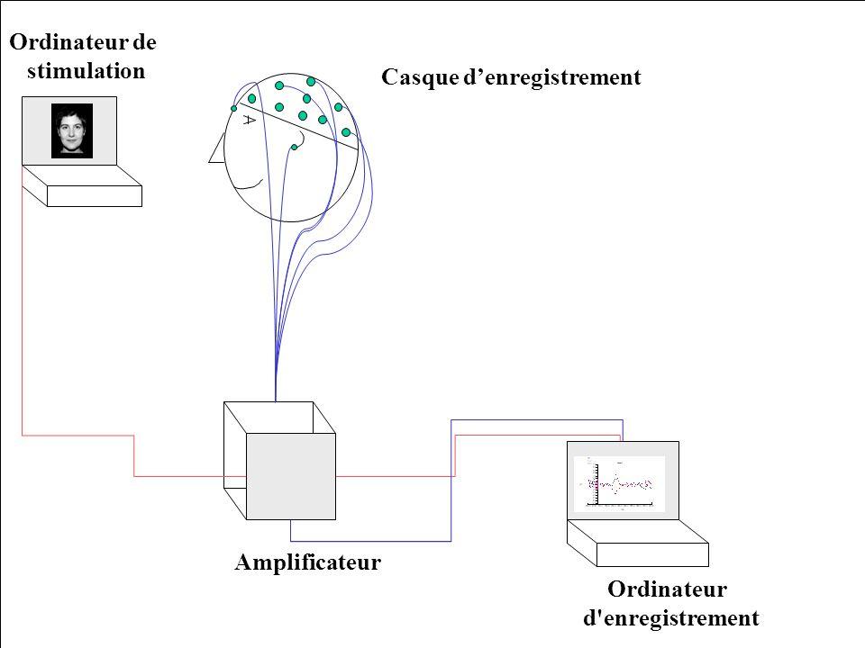 Principes de base Dérivé de lEEG (enregistrement au repos de lactivité électrique cérébrale à la surface du scalp).