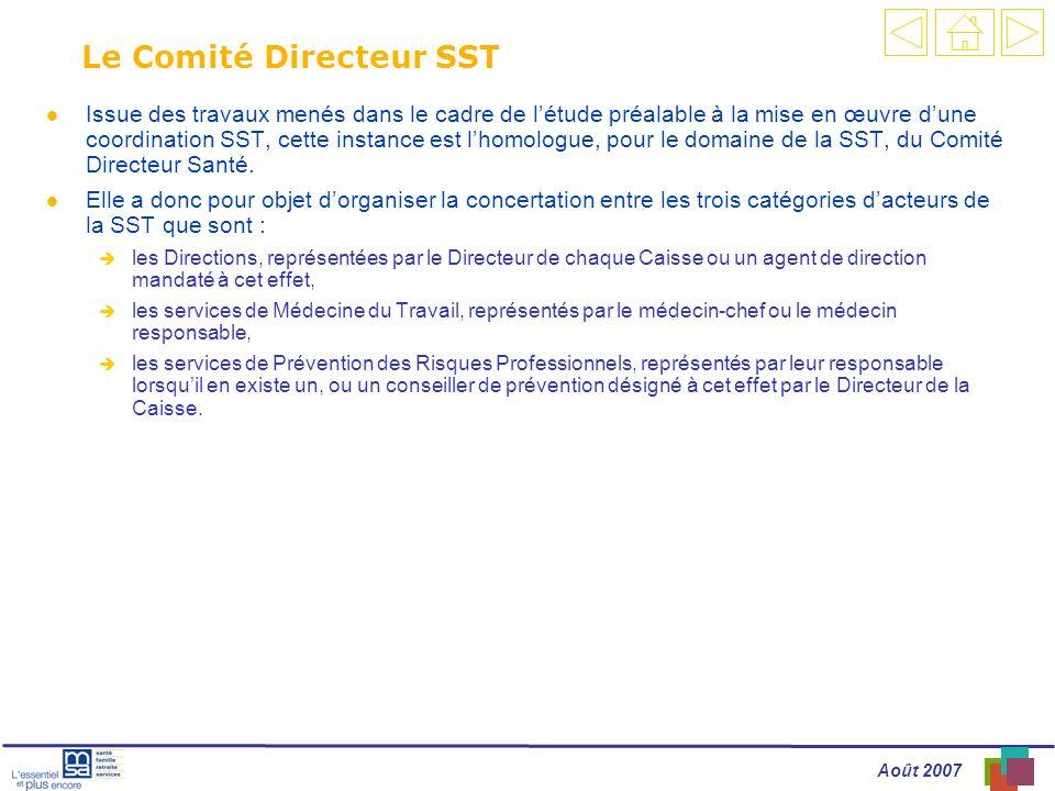 Août 2007 Le Comité Directeur SST l Issue des travaux menés dans le cadre de létude préalable à la mise en œuvre dune coordination SST, cette instance est lhomologue, pour le domaine de la SST, du Comité Directeur Santé.