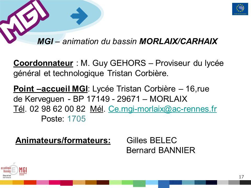 17 MGI – animation du bassin MORLAIX/CARHAIX Coordonnateur : M.