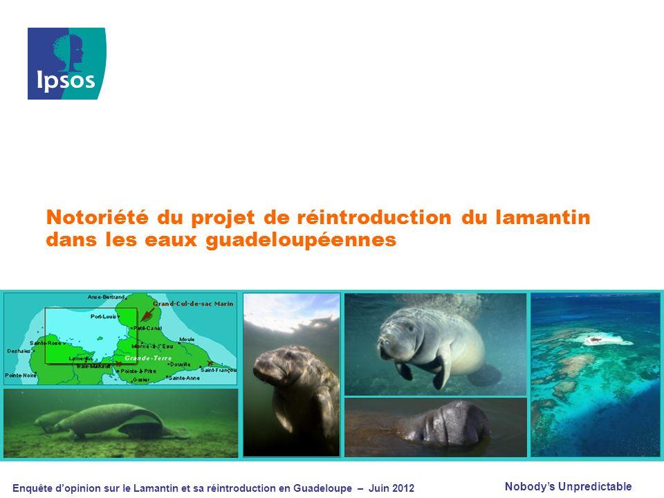 Nobodys Unpredictable Enquête dopinion sur le Lamantin et sa réintroduction en Guadeloupe – Juin 2012 Notoriété du projet de réintroduction du lamanti