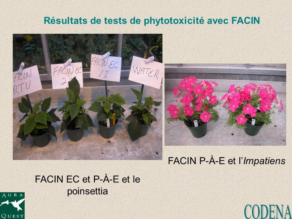 Résultats de tests de phytotoxicité avec FACIN FACIN EC et P-À-E et le poinsettia FACIN P-À-E et lImpatiens