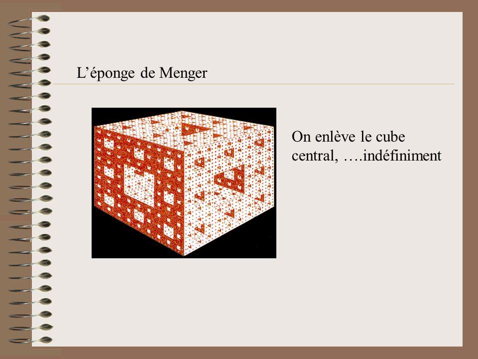 Le tapis de Sierpinsky Cest une surface dont on enlève un carré central …. indéfiniment