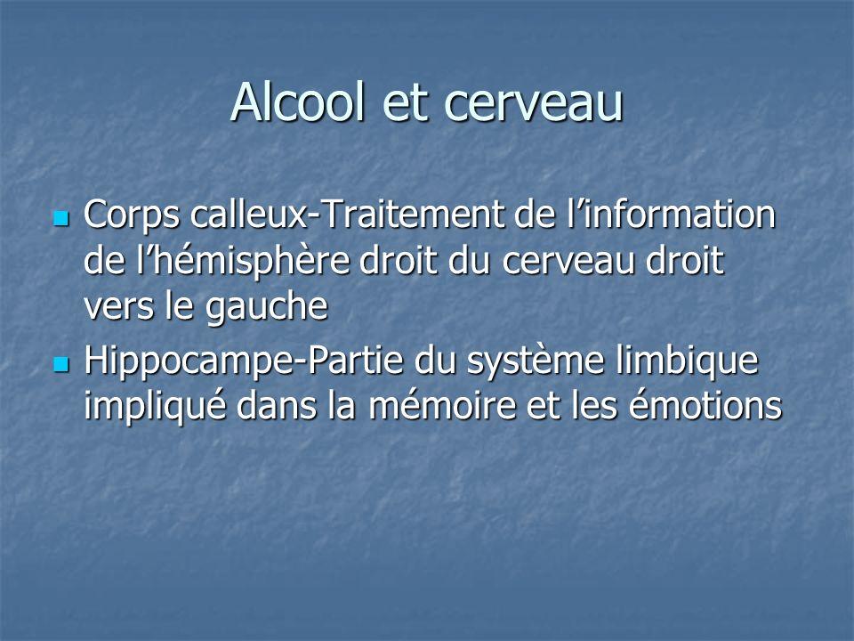 Alcool et cerveau Corps calleux-Traitement de linformation de lhémisphère droit du cerveau droit vers le gauche Corps calleux-Traitement de linformati