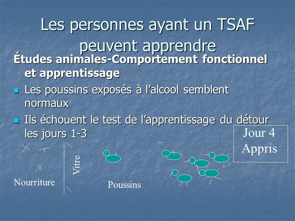 Les personnes ayant un TSAF peuvent apprendre Études animales-Comportement fonctionnel et apprentissage Les poussins exposés à lalcool semblent normau