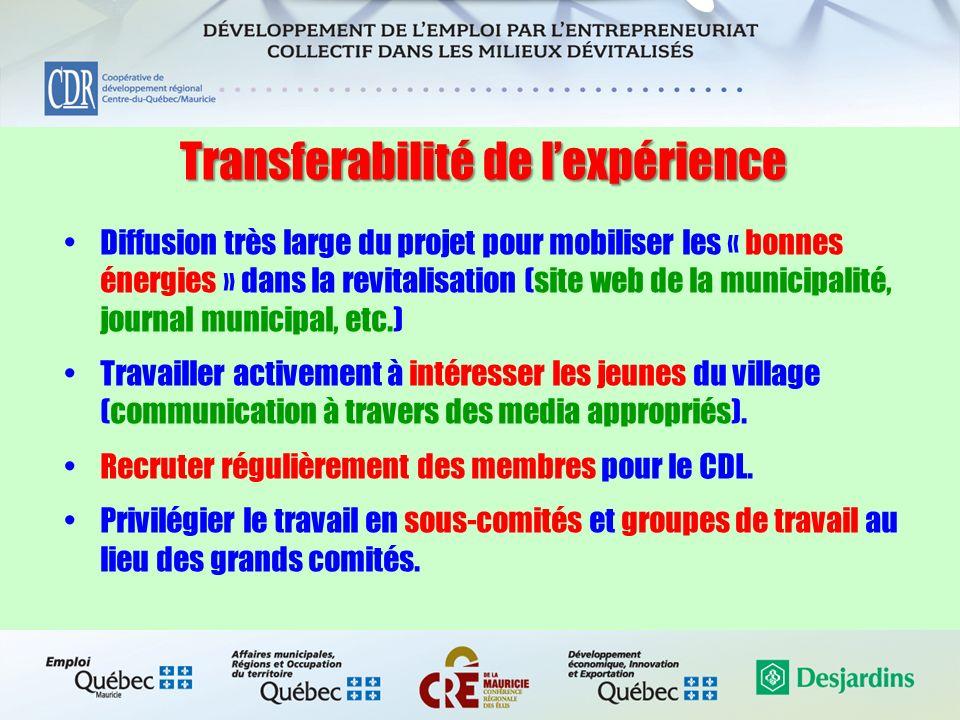 Transferabilité de lexpérience Diffusion très large du projet pour mobiliser les « bonnes énergies » dans la revitalisation (site web de la municipali