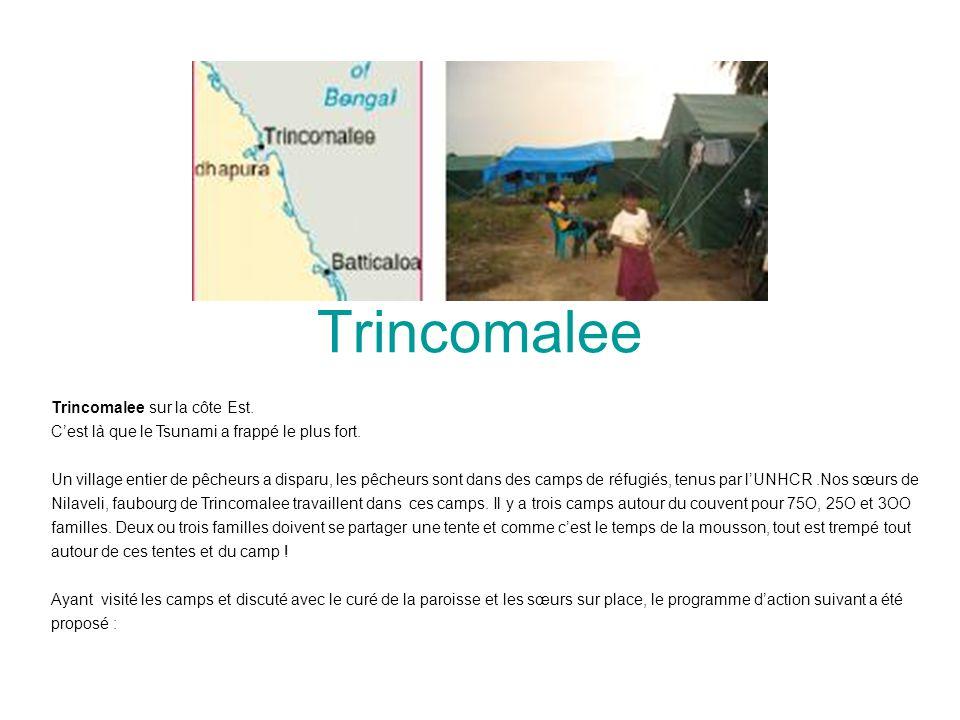 Trincomalee Trincomalee sur la côte Est. Cest là que le Tsunami a frappé le plus fort. Un village entier de pêcheurs a disparu, les pêcheurs sont dans