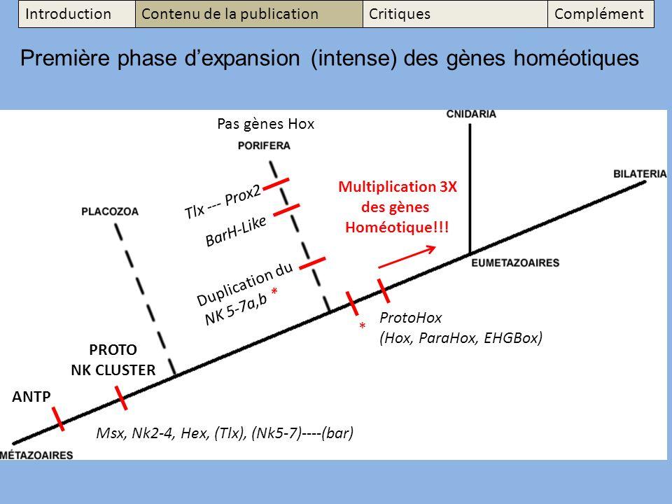 Msx, Nk2-4, Hex, (Tlx), (Nk5-7)----(bar) Première phase dexpansion (intense) des gènes homéotiques Tlx --- Prox2 BarH-Like Duplication du NK 5-7a,b * ANTP * Multiplication 3X des gènes Homéotique!!.