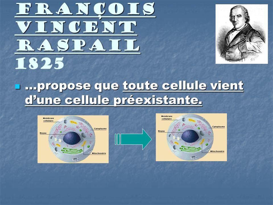 François Vincent Raspail François Vincent Raspail 1825 …propose que toute cellule vient dune cellule préexistante. …propose que toute cellule vient du