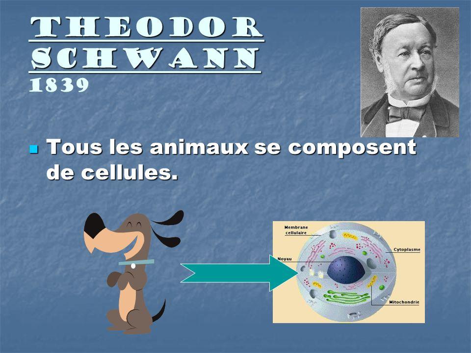 Theodor Schwann Theodor Schwann 1839 Tous les animaux se composent de cellules. Tous les animaux se composent de cellules.