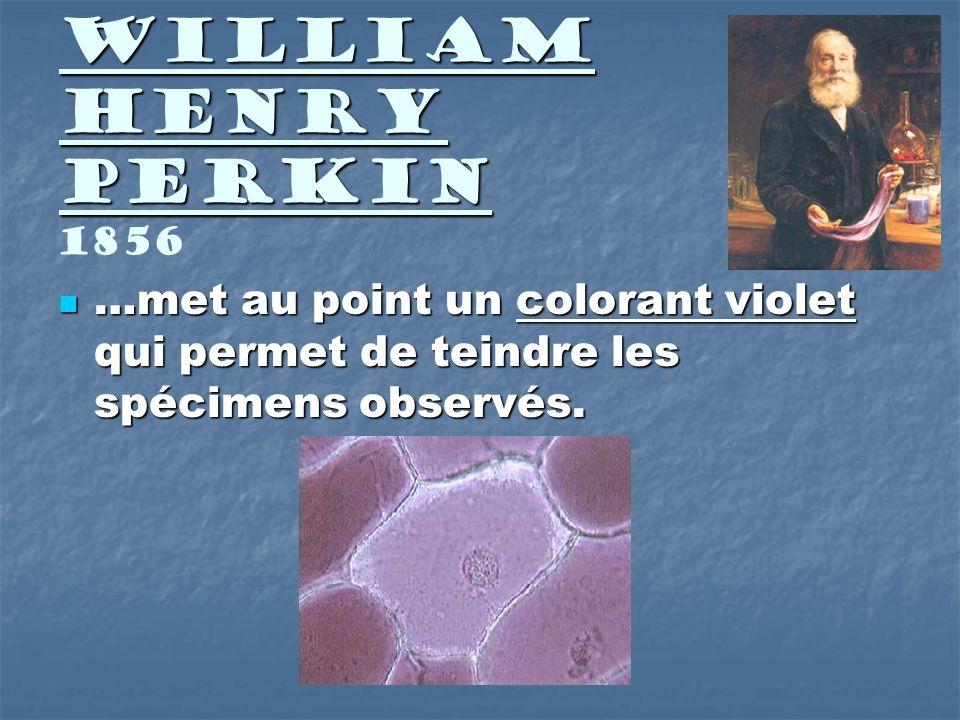 William Henry Perkin William Henry Perkin 1856 …met au point un colorant violet qui permet de teindre les spécimens observés. …met au point un coloran