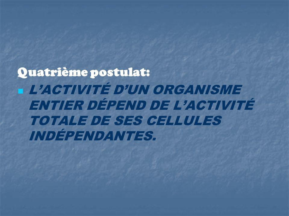 Quatrième postulat: LACTIVITÉ DUN ORGANISME ENTIER DÉPEND DE LACTIVITÉ TOTALE DE SES CELLULES INDÉPENDANTES.