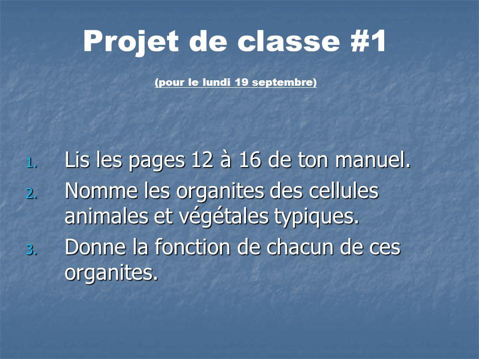 1. Lis les pages 12 à 16 de ton manuel. 2. Nomme les organites des cellules animales et végétales typiques. 3. Donne la fonction de chacun de ces orga