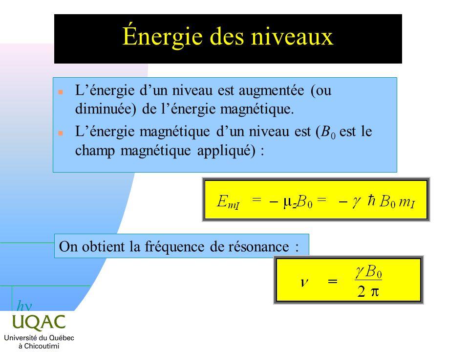 h Énergie et champ appliqué B 0 > 0 m I = 1/2 m I = + 1/2 E = h B 0 / 2 B 0 = 0 I = ± 1/2