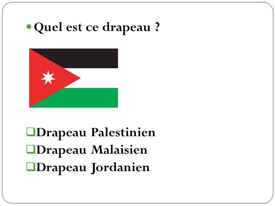 Drapeau Palestinien Drapeau Malaisien Drapeau Jordanien