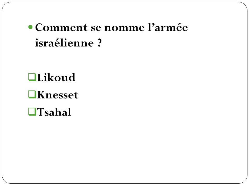 Likoud Knesset Tsahal