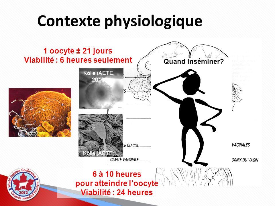 Contexte physiologique 6 à 10 heures pour atteindre loocyte Viabilité : 24 heures 1 oocyte ± 21 jours Viabilité : 6 heures seulement Kölle (AETE, 2010