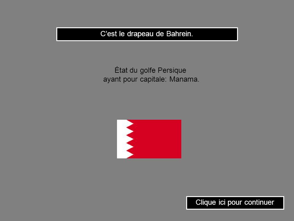 Clique sur le drapeau de la Roumanie. État du sud-est de lEurope ayant pour capitale: Bucarest.