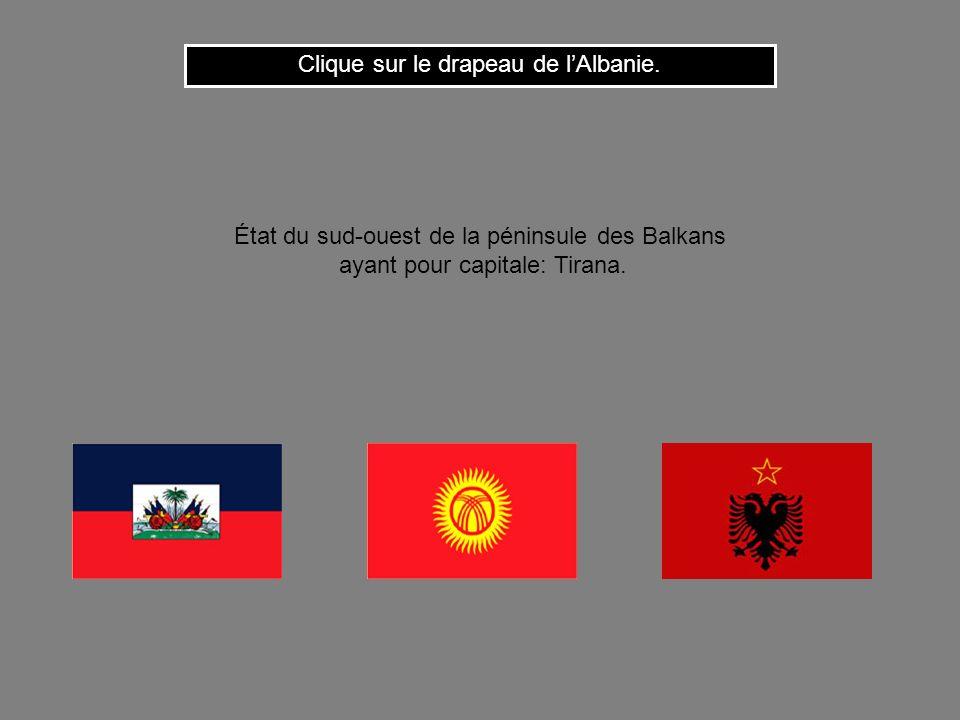 Cest le drapeau de la Moldavie République européenne ayant pour capitale: Chisinau.. Clique ici pour continuer