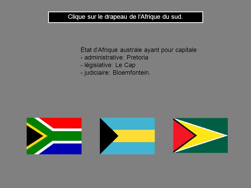 Clique sur le drapeau de lAfrique du sud.