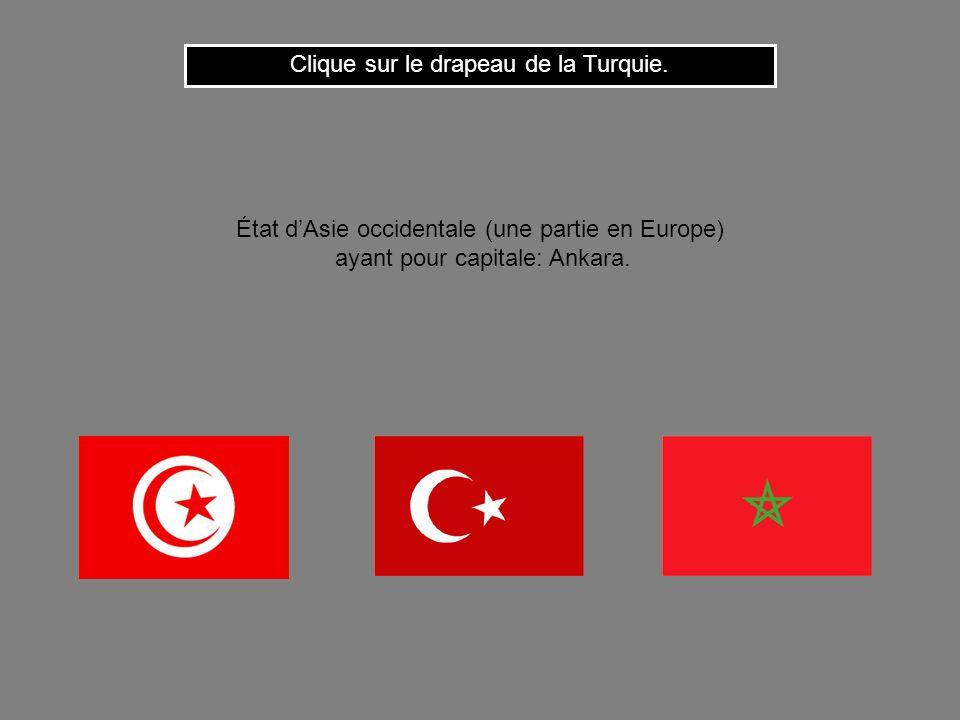 Cest le drapeau de lAlgérie. Clique ici pour continuer Nous avons déjà vu ce drapeau !
