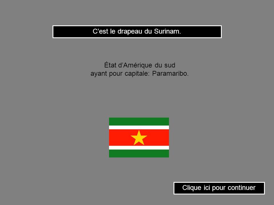 Clique ici pour continuer Cest le drapeau du Togo. État de lAfrique occidentale ayant pour capitale: Lomé.