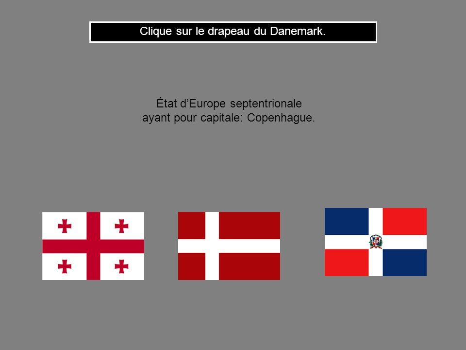Cest le drapeau de la Cote dIvoire. Clique ici pour continuer État dAfrique occidentale ayant pour capitale: Abidjan.