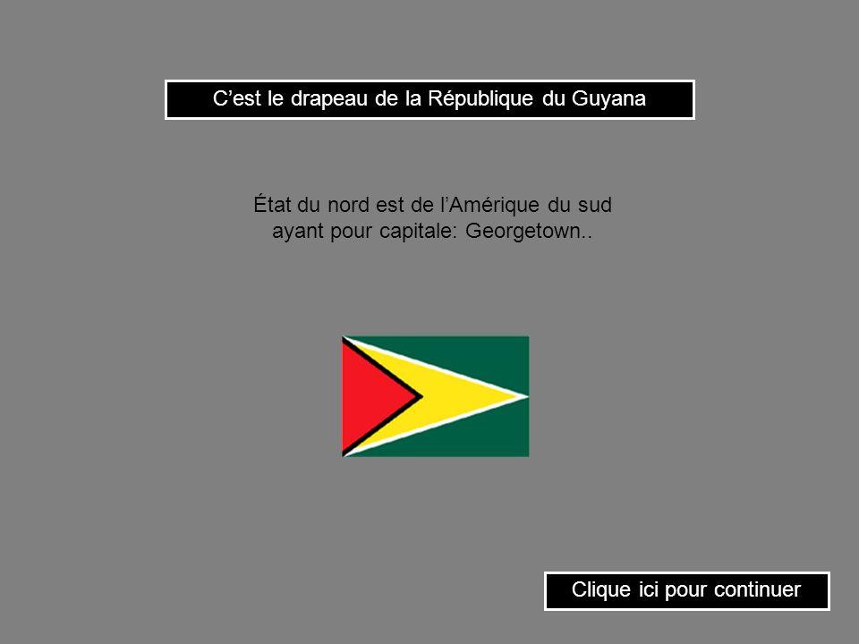Cest le drapeau de la République du Guyana Clique ici pour continuer État du nord est de lAmérique du sud ayant pour capitale: Georgetown..
