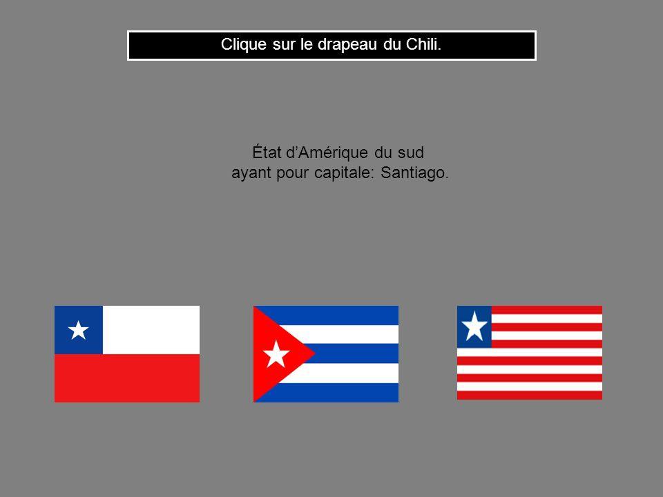 Cest le drapeau de la République Dominicaine. Clique ici pour continuer État dAmérique centrale ayant pour capitale: Saint Domingue.